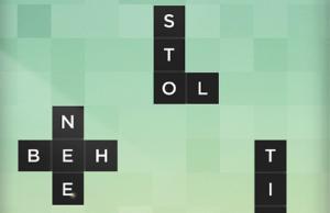 Bonza Word Puzzle2