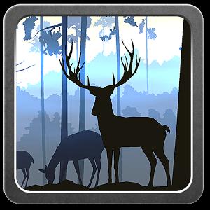 Flatland app Icon